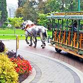 Stanley Park Horse-Drawn Topurs